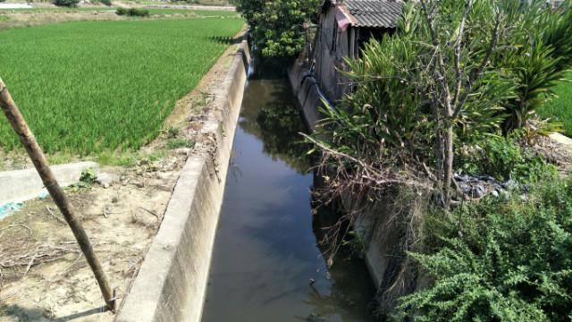 新化高工4.1分農地,台南市新化區信義路