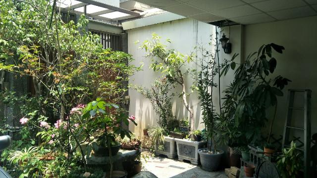 大橋大地坪雙車墅,台南市永康區大橋三街